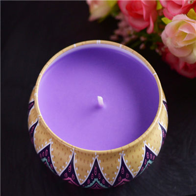 DIY Candle Making Kit for Lavender Scented Tin Candle